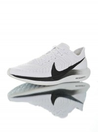 Nike Zoom Pegasus Turbo 2
